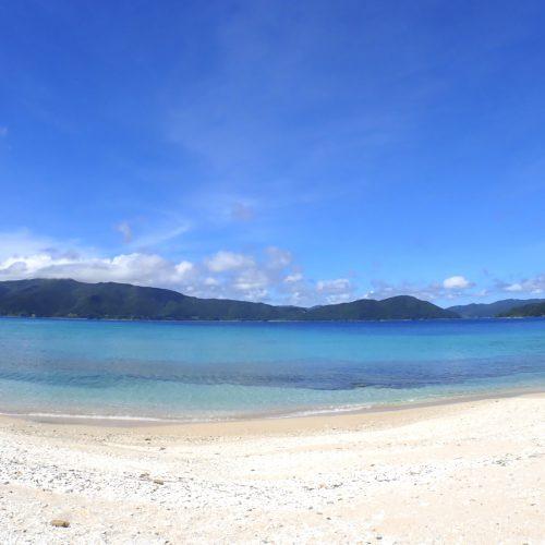 加計呂麻島でのツアー再開について