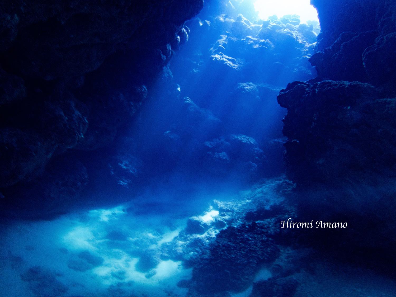 水中洞窟を仰ぎ見る