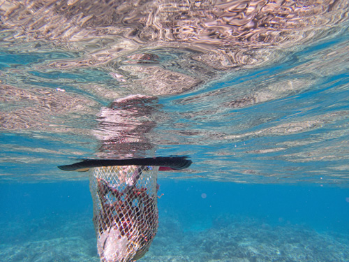 ゴミを入れる網を装着した浮き輪