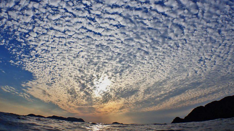 加計呂麻島シュノーケリング|泳げシマアジくん、あるいは泳がされたぷかりんごの巻。