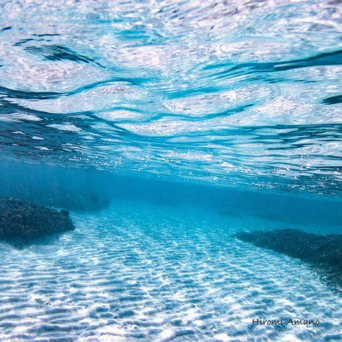 加計呂麻島シュノーケリング|砂漣に何が見えるか。